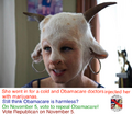 Obamacare doctors injected her with marijuanas.png