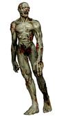 RECV Zombie B