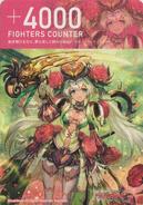 Ranunculus-CounterFront