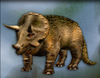 Carnivores Triceratops