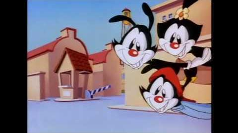 Animaniacs Theme - HIGH DEFINITION