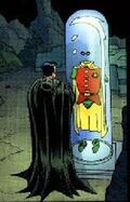 Jason todd trophy case