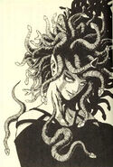 GVH Medusa