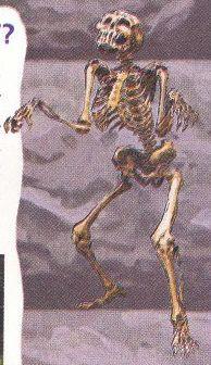 File:NP C4 Skeleton.JPG