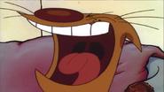 Cat Yelling