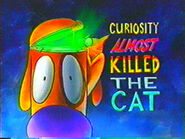 CuriosityAlmostKilledtheCat