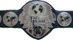 DFW Tag Team CHampionship Transparent