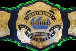 DFW Championship Transparent