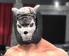 SilverwolfII