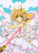 Illustrations from CCS 20th volume 9 Limited Edition