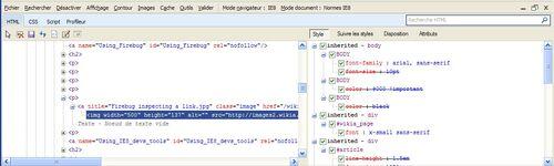 IE8 dev tool