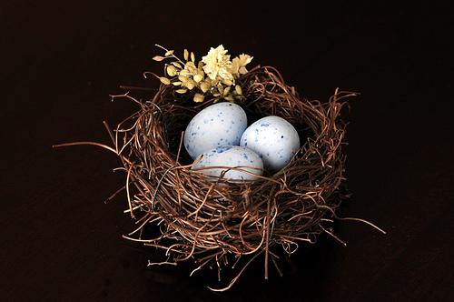 File:Nest for Chocolate Truffles.jpg