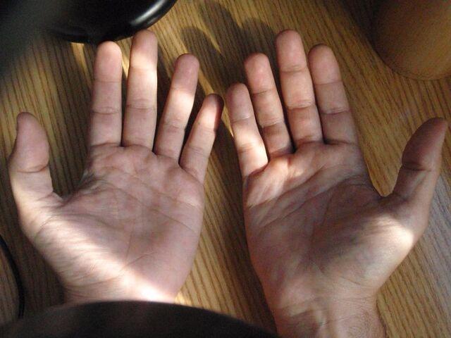 File:Hands Front JSV.jpg