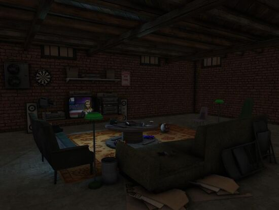 Basement - Social Area - Mom's - Old Couches