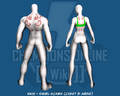 Skin - Swirl Scars (Chest & Arms) - Back