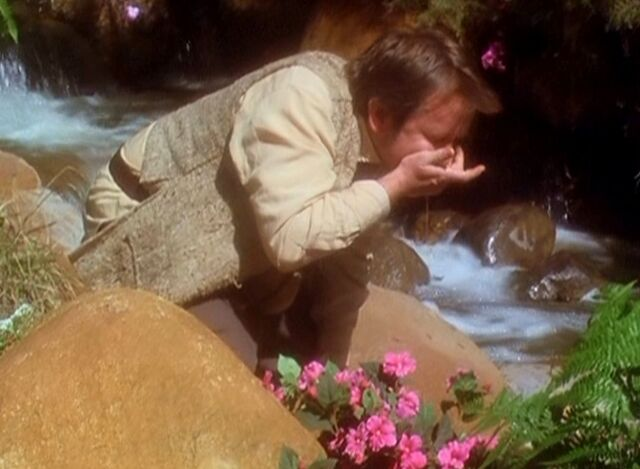 File:Tull drinking from the stream.JPG