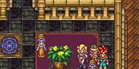 Zeal Plant Woman