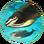 Whales (Civ5)