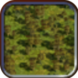 File:Light Forest (Civ4Col).png