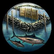 Aquaculture (Civ5)