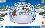 CPIP igloo bg