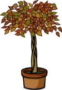 Ficus Plant sprite 002
