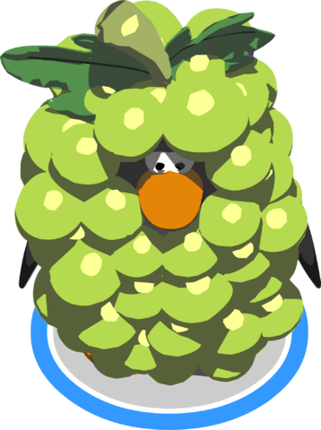 File:GreenGrapeCostumeinGame.png