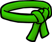 Green Ninja Belt icon
