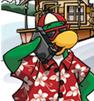 Rookie using epf new spy phone