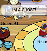 File:Ghost Penguin bug.png