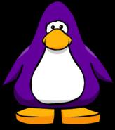 Dark Purple on a Player Card