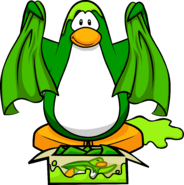 Lime Green Dojo Clean capes