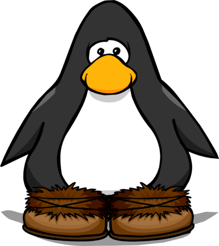 File:Fuzzy Boots from a Player Card.PNG