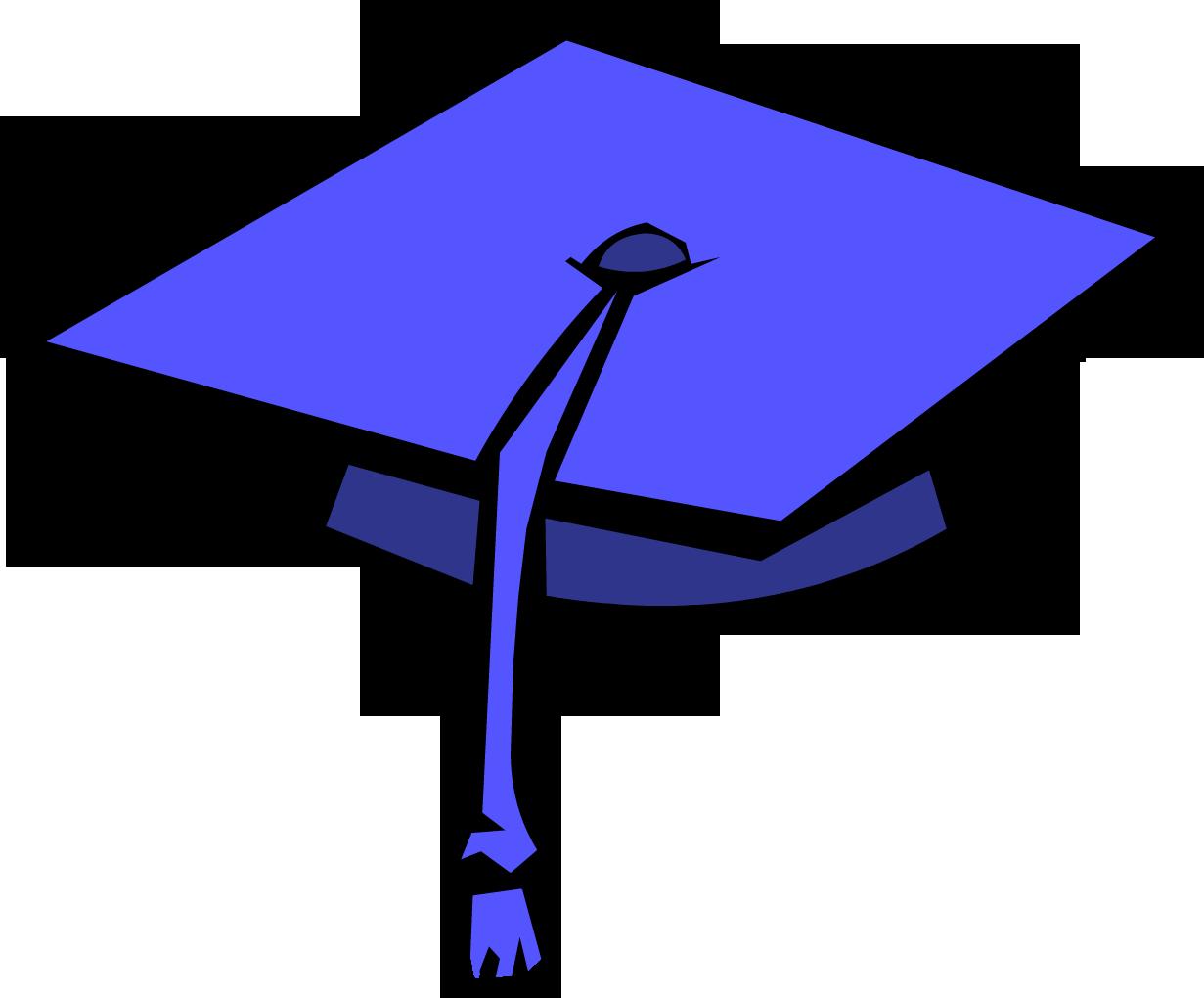 Graduation Cap | Club Penguin Wiki | Fandom powered by Wikia