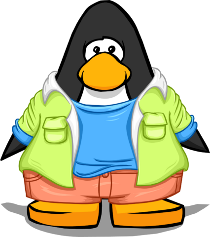 File:Color Me Cool Outfit on a Player Card.png