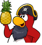 Rockhopper holding Pineapple