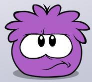 Angry Purple Puffle