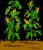 Garden sprite 013
