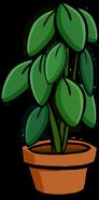 Large House Plant sprite 001