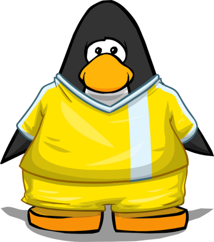 File:Clothing 24126 player card.png