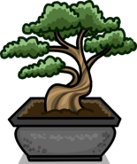 Bonsai Tree sprite 002