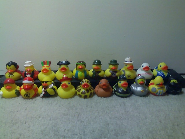 File:Duck collection.jpg
