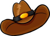 Brown Cowboy Hat clothing icon ID 1240