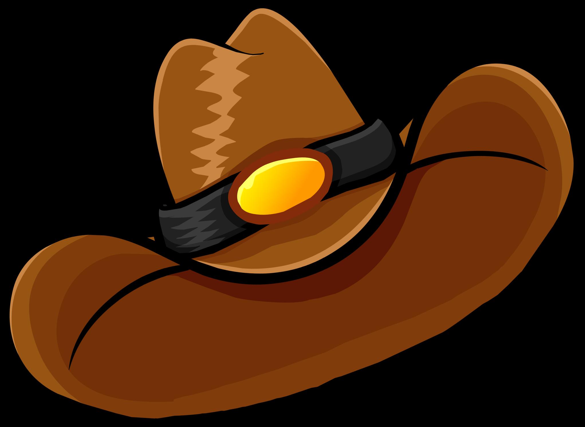 Cowboy Hat Images Brown Cowboy Hat