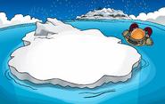 New Year's 2009 Iceberg