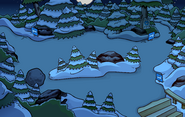 Operation Puffle Forest