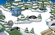 Puffle Party 2011 construction Forest