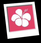Pink Hawaiian Background Inventory