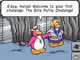 File:Elite puffle challenge.png