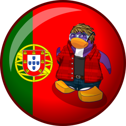 File:Custom Flags to Gonzas14.png